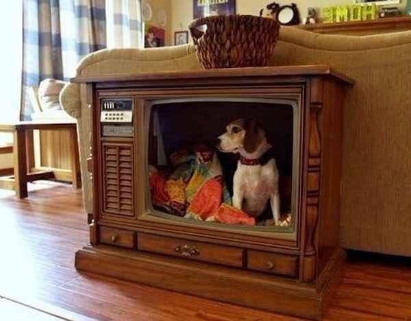Как сделать будку для собаки из телевизора