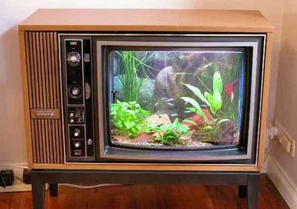 Аквариум из старого телевизора своими руками